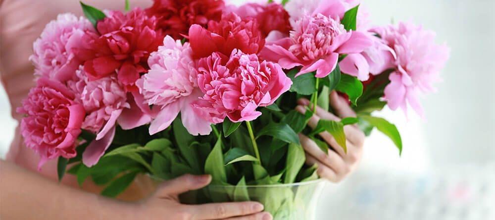 Kerf de steeltjes thuis direct in, zodat je bloemen langer houden