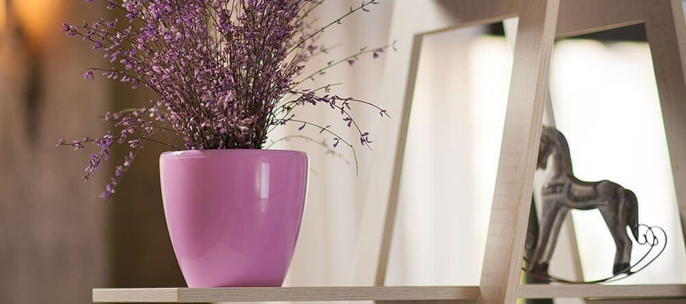 Geur en kleur van planten zijn belangrijk voor een ontspannen atmosfeer