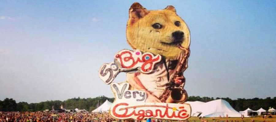 article/awesome-photo-from-festivals-doge