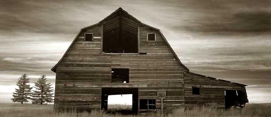 countryside-photography-sad-countryside