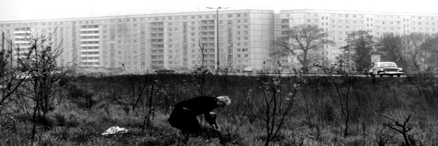 sibylle-bergemann-black-and-white-art-photography