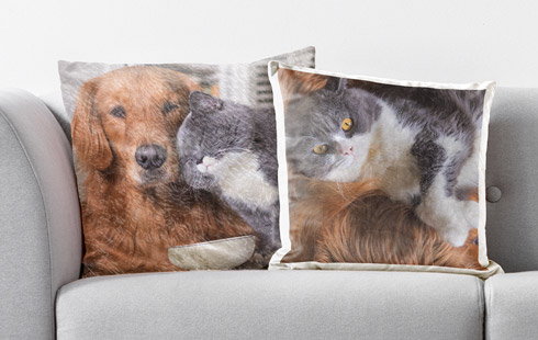 photo cushion cover roomview