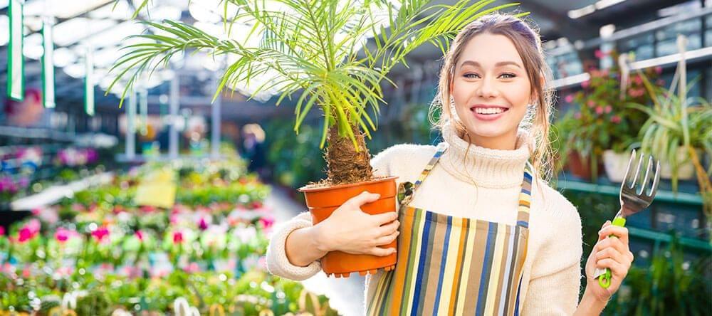 Combina palmas y helechos con flores de colores para una atmósfera óptima
