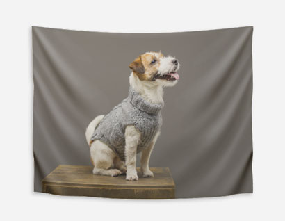 blanket printed with photo of dog