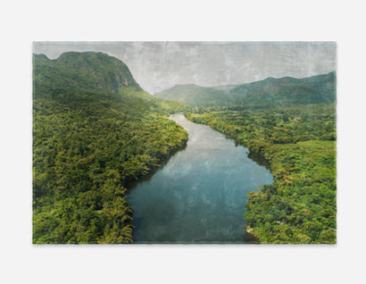 rug printed with photo of river between forests