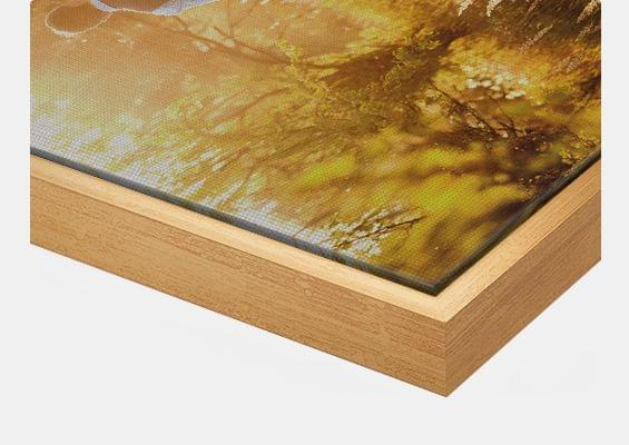canvas print in gold frame closeup front