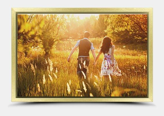 canvas print in gold frame fullview